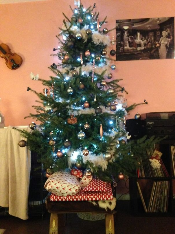 Ferret-proof Christmas Tree And Presents