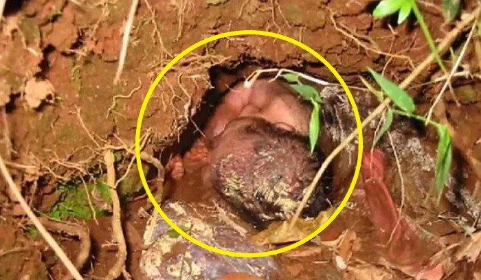 赤ちゃんを産んですぐに泥に埋めた母親