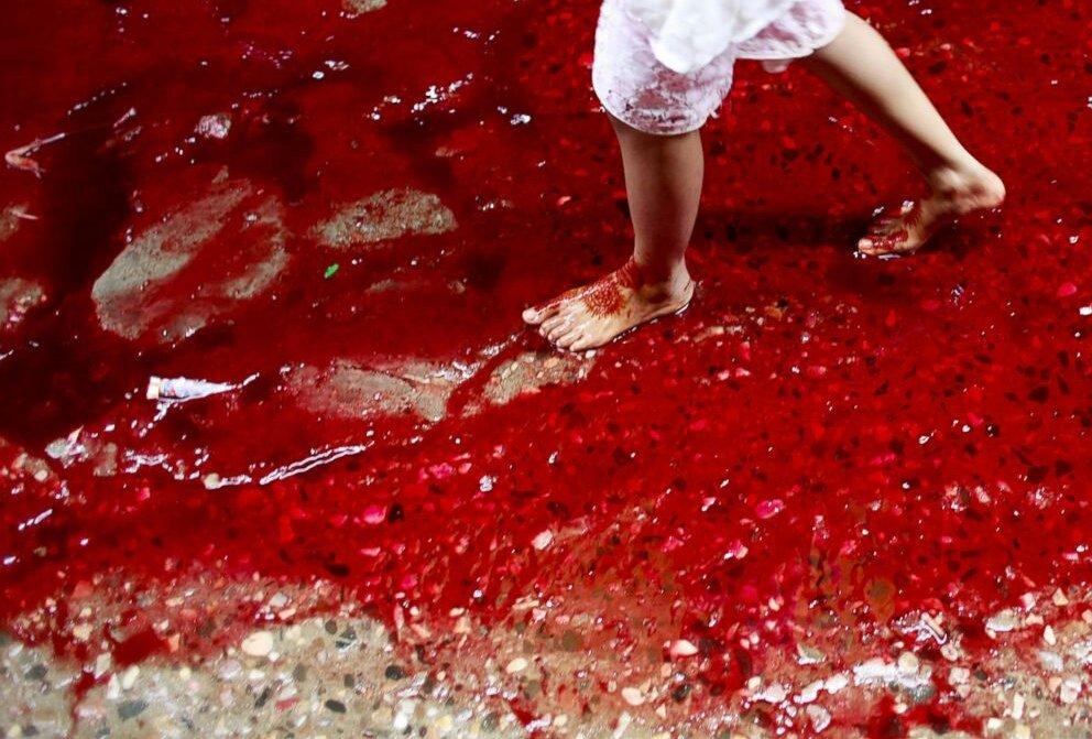 「血」の画像検索結果