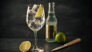gin_tonic_bottle6