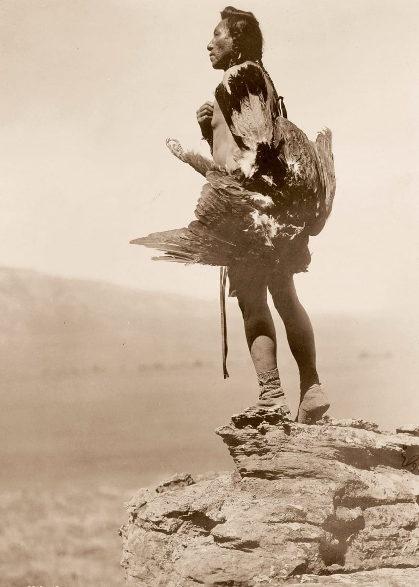 a-hidatsa-man-with-an-eagle-in-1908