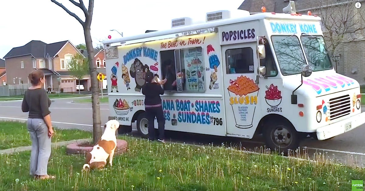 Screen Shot 2016 05 27 at 9.jpg?resize=412,275 - Adorable Pit Bull Waited Patiently For His Delicious Ice Cream