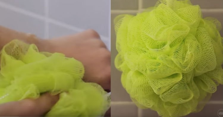 http awm.comwp contentuploadssites24201609gbnm.jpg?resize=412,232 - Loofah Sponges Are Breeding Grounds For Bacteria And Experts Warned To Stop Using Them