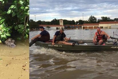 louisiana rescuers take action 412x275.jpg?resize=412,275 - Rescuers Saved Drowning Dog After Spotting Him Catching His Final Breaths