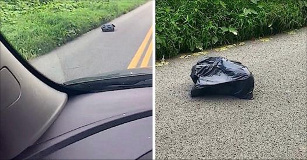 Momspotstrashbag.png?resize=412,275 - Mother Found A 'Walking' Trash Bag In The Middle Of The Road