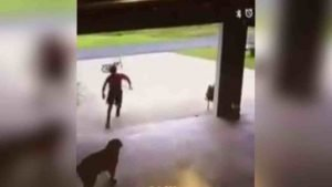 boy sneaks into garage 300x169 - She Caught A Little Boy Sneaking Into Her Garage Then She Saw Him Do THIS!