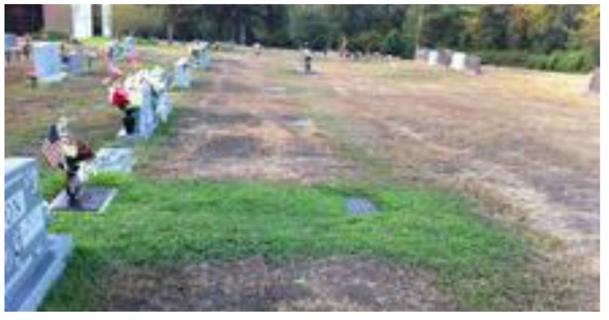 grave miracle.jpg?resize=1200,630 - Mother Discovered A Stranger Had Been Watering Her Son's Grave