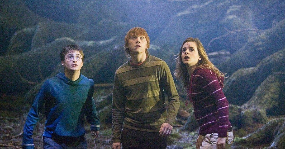harry potter foret interdite hermione ron.jpg?resize=1200,630 - [NEWS] La Forêt Interdite de Poudlard ouvre ses portes à Londres !