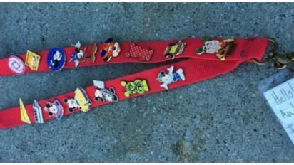 mickey pins cover 412x232.jpg?resize=412,232 - Disneyland Employee Desperately Looked For Lanyard's Owner As Note Indicated 'I Am Autistic'