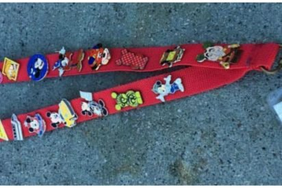 mickey pins cover 412x275.jpg?resize=412,275 - Disneyland Employee Desperately Looked For Lanyard's Owner As Note Indicated 'I Am Autistic'