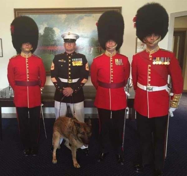 Image via The Coldstream Guards / Facebook