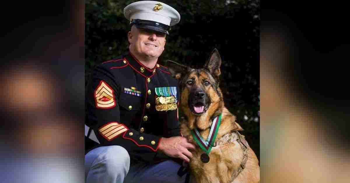 semper fido.jpg?resize=1200,630 - One Heroic Dog Never Let A Single Soldier Get Injured On Her Watch
