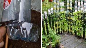 bottle-tower-gardens