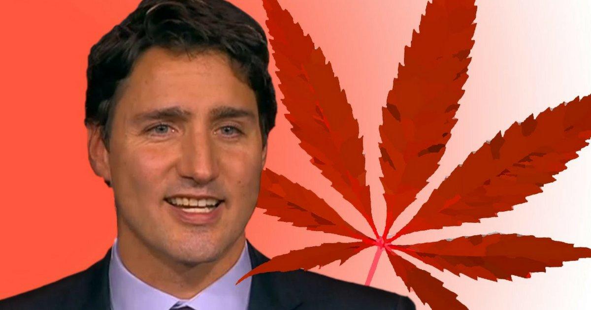 et le meilleur pouvoir est 2 2.png?resize=1200,630 - Les canadiens vont pouvoir cultiver du cannabis chez eux