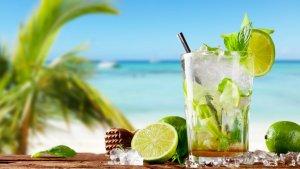 sans titre 16 300x169.png?resize=300,169 - Top 10 des bonnes raisons de faire du mojito votre boisson de l'été
