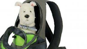 voici la brossea cheveux ultime 3 300x169 - Le sac à dos pratique pour transporter son chien !
