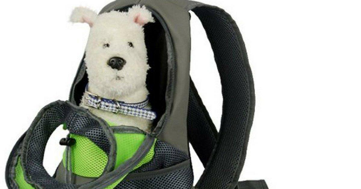 voici la brossea cheveux ultime 3.png?resize=1200,630 - Le sac à dos pratique pour transporter son chien !