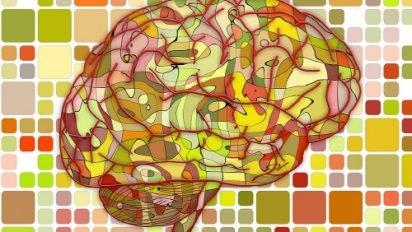 1 4 412x232.jpg?resize=412,232 - 【疑問】左脳型人間は論理的で、右脳型人間は創意的か?
