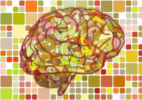 1 4.jpg?resize=1200,630 - 【疑問】左脳型人間は論理的で、右脳型人間は創意的か?