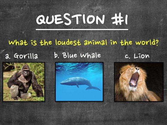 10yearold.png?resize=1200,630 - QUIZ: Can You Pass This Quiz Written For A 10 Year Old?