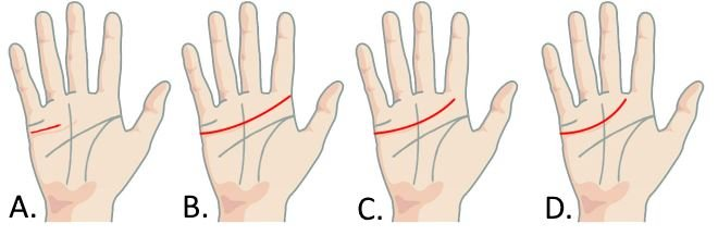 how-to-read-your-palm-heart-line-a
