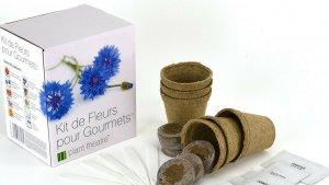 sans titre 10 1 300x169 - Le kit de fleurs comestibles à cultiver soi-même !