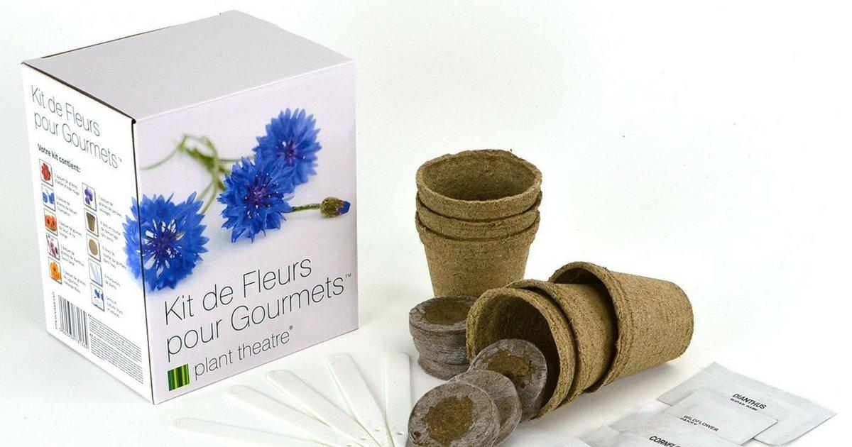sans titre 10 1.png?resize=1200,630 - Le kit de fleurs comestibles à cultiver soi-même !
