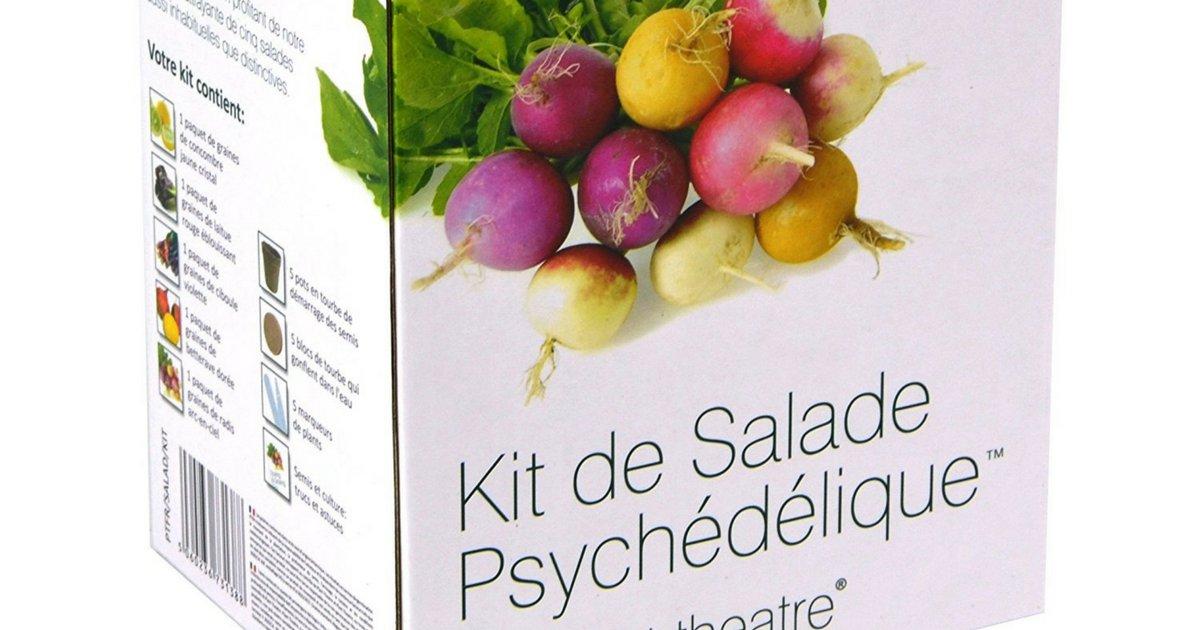 sans titre 11 1.png?resize=1200,630 - Le kit de Salade Psychédélique à cultiver soi-même !