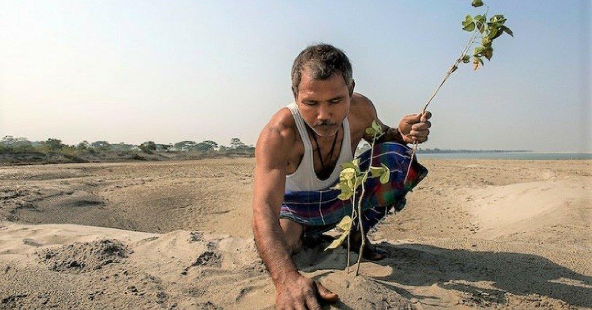 sans titre 2.jpg?resize=1200,630 - Cet homme plante un arbre par jour pendant plus de 30 ans, le résultat est à couper le souffle