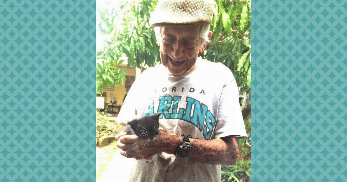 sans titre 4 3 - Adorable, un papi de 85 ans élève une famille de chatons en cachette