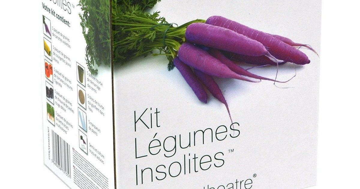 sans titre 8.png?resize=1200,630 - Le kit pour cultiver des légumes insolites !