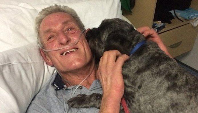 1 20.png?resize=412,232 - 【感動】お見舞いに来た愛犬を見たおじいさん、昏睡状態から目覚める