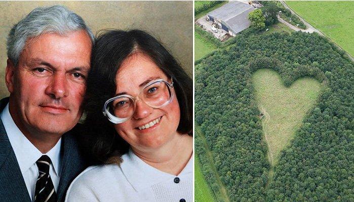 """619 1.png?resize=412,232 - 天国にいる妻のために木植えて""""ハート(♡)森""""を作ったお爺さん"""