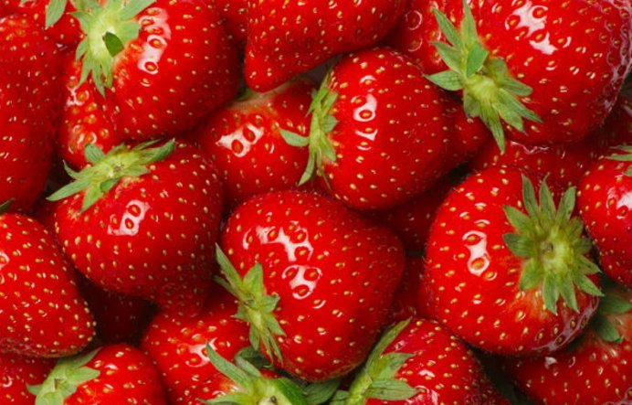 705 41.png?resize=1200,630 - イチゴが健康に良い10つの理由