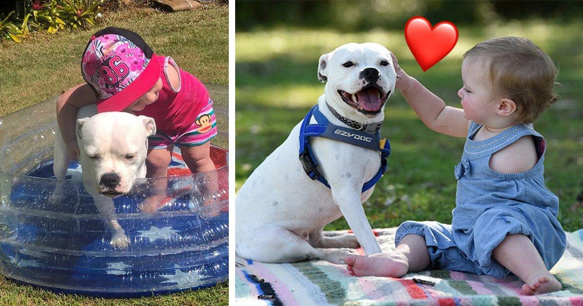 article thumbnail2 3.jpg?resize=1200,630 - 팔이 하나인 소녀와 다리가 세 개인 강아지, 둘이 친구가 된 이유는?