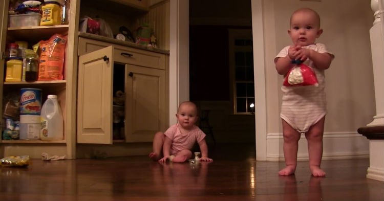 btyd.jpg?resize=636,358 - Twins Steal Bag Of Marshmallows From Pantry. But It's Their Next Move That's Going Viral