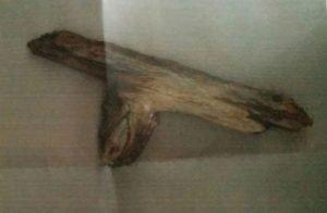 stick-gun-brandy_miller-facebook-370x242