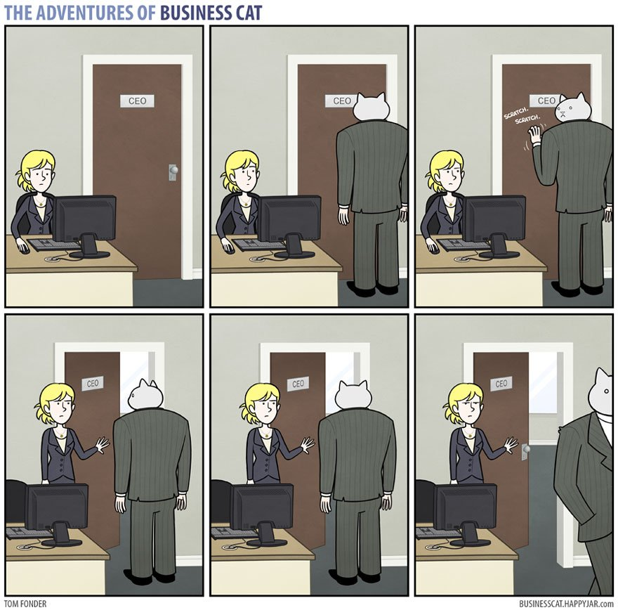 10 4 - What if your BOSS was a CAT? (10+ genius photos)