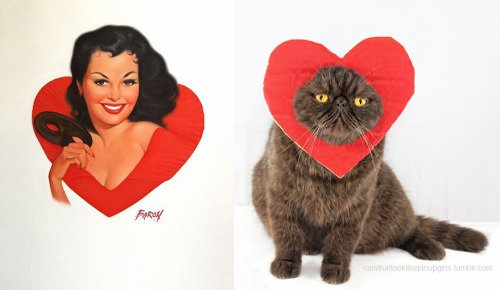 15 1 - 20+ Cats That Look Like Pinup Girls