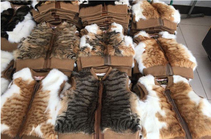 1708160100tradingbasis - 동네 할머니의 '낯설지 않은 털 코트'... 코트 재료가 잃어버린 우리집 고양이?!