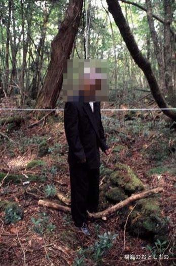 1708260719 - 한 번 들어가면 나올 수 없는 죽음의 숲 '주카이'... 일본의 '자살명소'