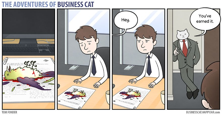 2 22 - What if your BOSS was a CAT? (10+ genius photos)