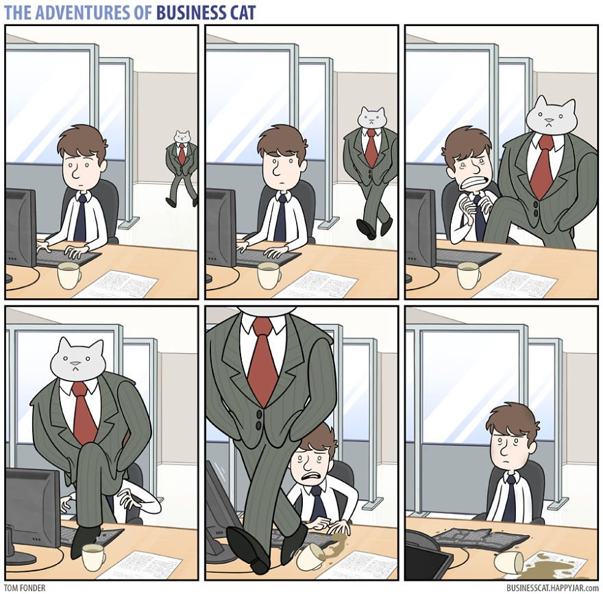 6 6 - What if your BOSS was a CAT? (10+ genius photos)
