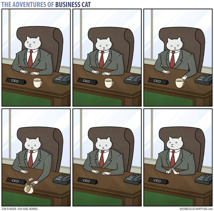 8 4 - What if your BOSS was a CAT? (10+ genius photos)