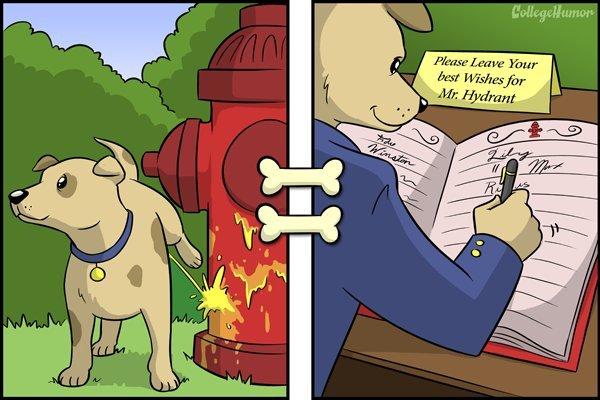 92990451b9aca78eef14cd135d9d3288 - '강아지의 관점에서 보는 세상'을 표현한 재미있는 일러스트 12가지
