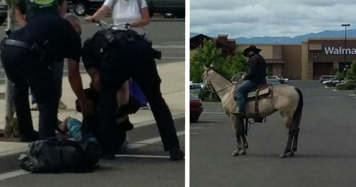 ec9db4eba684 ec9786ec9d8csdface - Woman Is Harassed By Man. Cop Can't Believe His Eyes When Horse Arrived Earlier To Tie Up The Man