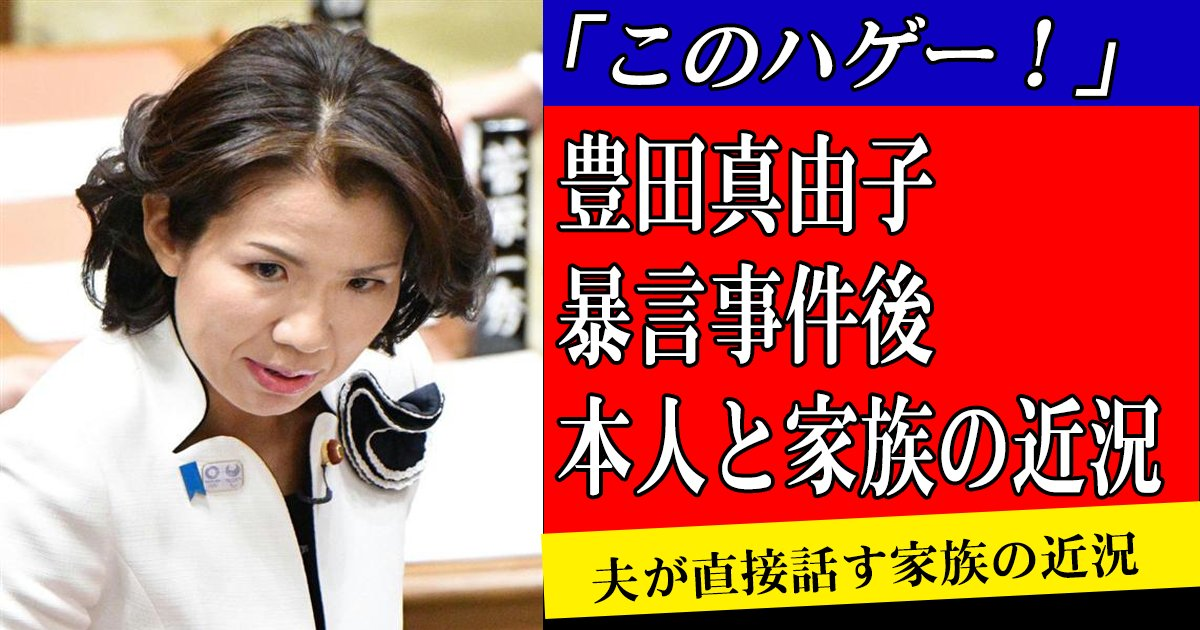 toyotagiin sum170824.png?resize=1200,630 - 「このハゲー!」で有名な豊田真由子議員の家族は今どうなったいる?