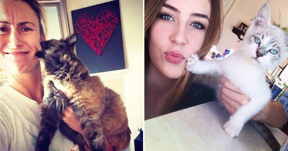 11111 1 - 주인과 '셀카' 찍기 싫은 고양이들의 반응 (사진 15장)