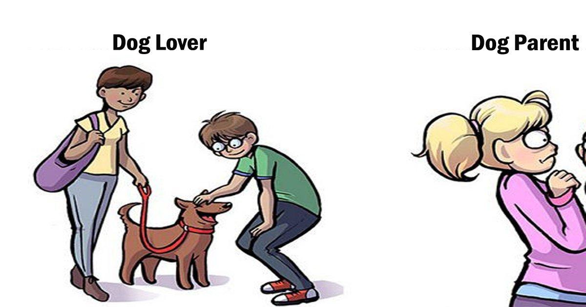 17092400th.jpg?resize=648,365 - 강아지를 좋아하는 사람과 강아지를 키우는 사람의 차이점 7가지
