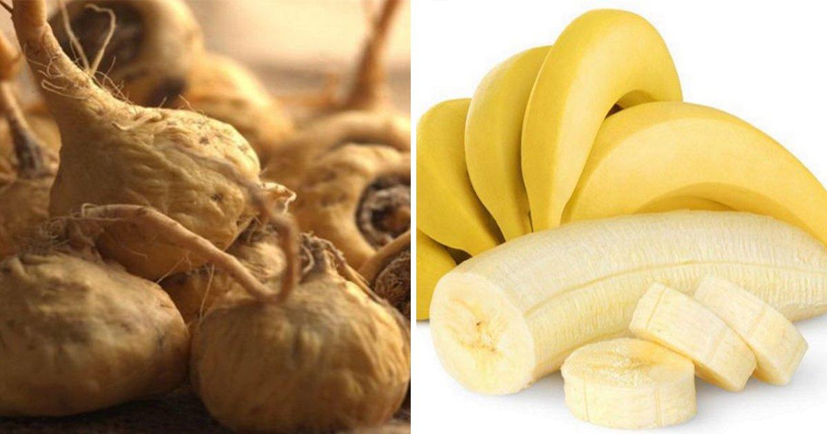 article thumbnail 24 - 당신의 '오르가슴' 향상에 도움을 주는 음식 11가지